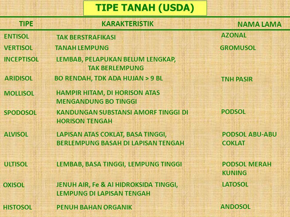 TIPE TANAH (USDA) TIPEKARAKTERISTIK NAMA LAMA ENTISOL TAK BERSTRAFIKASI AZONAL VERTISOL LEMBAB, PELAPUKAN BELUM LENGKAP, TAK BERLEMPUNG ARIDISOL BO RE