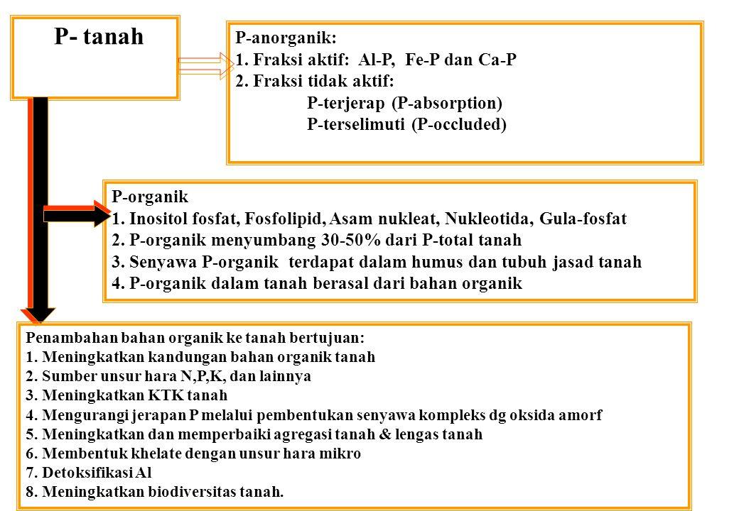 P- tanah P-anorganik: 1. Fraksi aktif: Al-P, Fe-P dan Ca-P 2. Fraksi tidak aktif: P-terjerap (P-absorption) P-terselimuti (P-occluded) P-organik 1. In