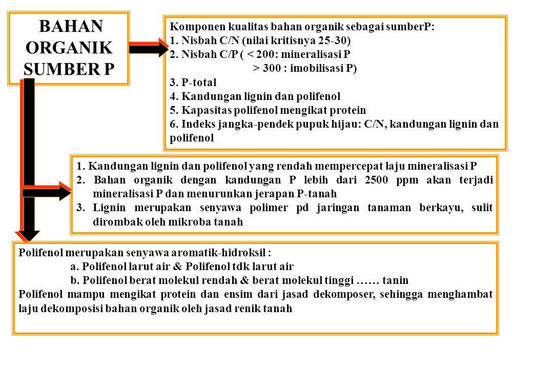 BAHAN ORGANIK SUMBER P Komponen kualitas bahan organik sebagai sumberP: 1. Nisbah C/N (nilai kritisnya 25-30) 2. Nisbah C/P ( < 200: mineralisasi P >