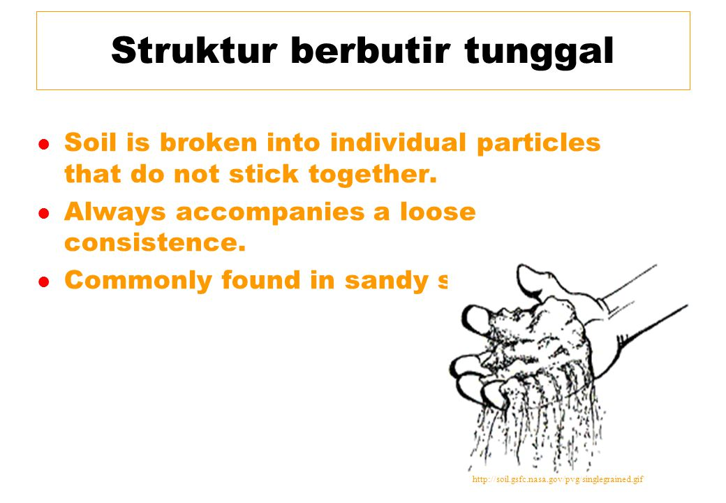 Struktur berbutir tunggal l Soil is broken into individual particles that do not stick together. l Always accompanies a loose consistence. l Commonly