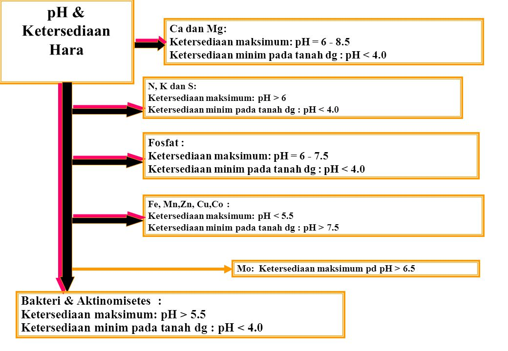 pH & Ketersediaan Hara Ca dan Mg: Ketersediaan maksimum: pH = 6 - 8.5 Ketersediaan minim pada tanah dg : pH < 4.0 N, K dan S: Ketersediaan maksimum: p