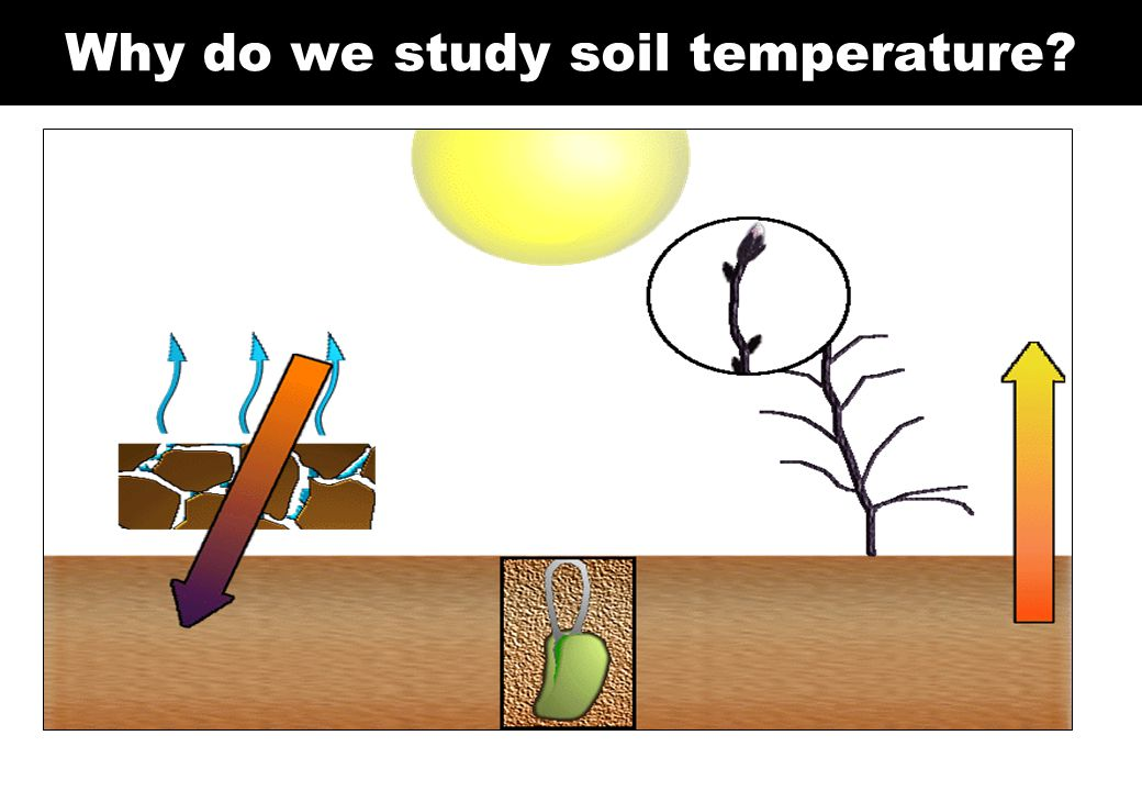 Why do we study soil temperature?