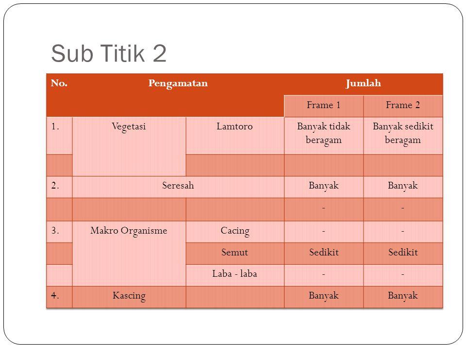 Sub Titik 2