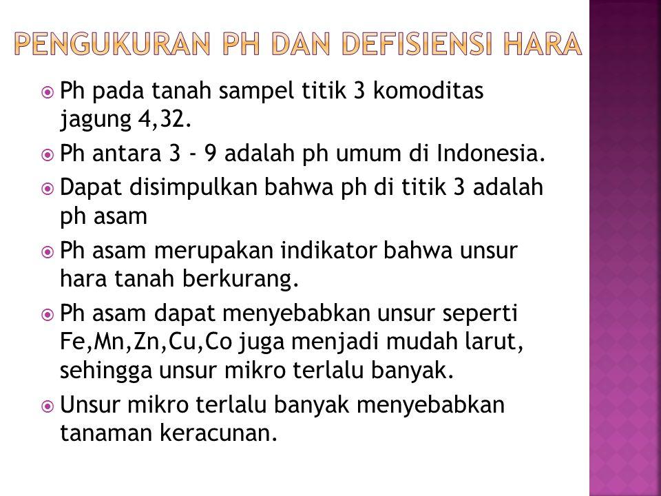 Ph pada tanah sampel titik 3 komoditas jagung 4,32.  Ph antara 3 - 9 adalah ph umum di Indonesia.  Dapat disimpulkan bahwa ph di titik 3 adalah ph