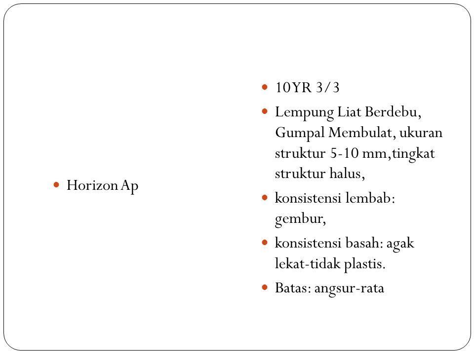 Horizon Ap 10 YR 3/3 Lempung Liat Berdebu, Gumpal Membulat, ukuran struktur 5-10 mm,tingkat struktur halus, konsistensi lembab: gembur, konsistensi ba