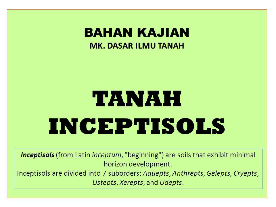 TANAH INCEPTISOLS Ciri tanah, resim suh dan rezim air, membedakan great groups dan subgroups yang ada dalam Inceptisols.