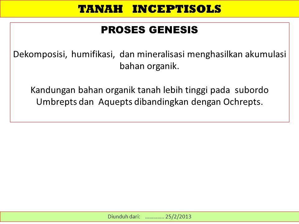 TANAH INCEPTISOLS PROSES GENESIS Dekomposisi, humifikasi, dan mineralisasi menghasilkan akumulasi bahan organik. Kandungan bahan organik tanah lebih t
