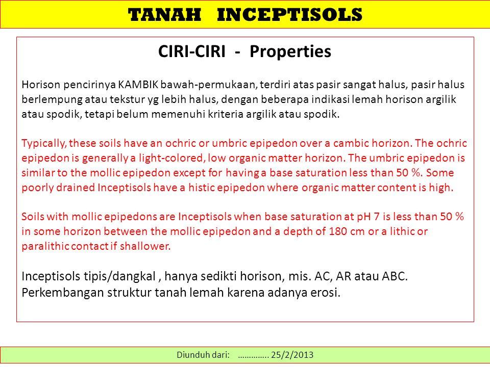 TANAH INCEPTISOLS CIRI-CIRI - Properties Horison pencirinya KAMBIK bawah-permukaan, terdiri atas pasir sangat halus, pasir halus berlempung atau tekst