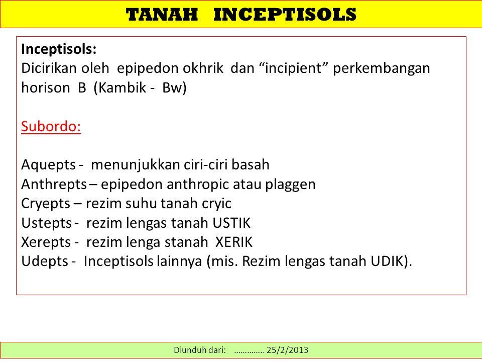 "TANAH INCEPTISOLS Inceptisols: Dicirikan oleh epipedon okhrik dan ""incipient"" perkembangan horison B (Kambik - Bw) Subordo: Aquepts - menunjukkan ciri"