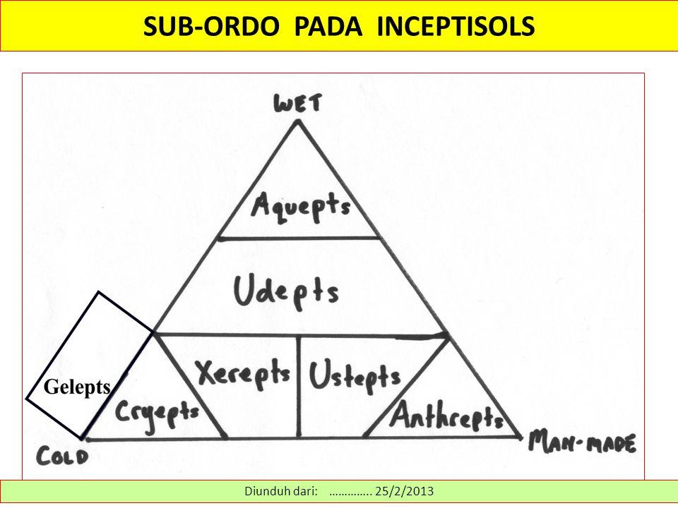 SUB-ORDO PADA INCEPTISOLS Diunduh dari: ………….. 25/2/2013