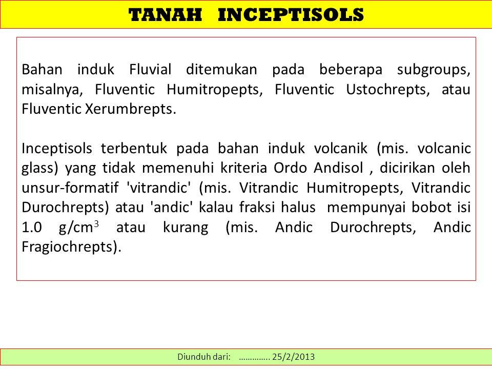 TANAH INCEPTISOLS Bahan induk Fluvial ditemukan pada beberapa subgroups, misalnya, Fluventic Humitropepts, Fluventic Ustochrepts, atau Fluventic Xerum