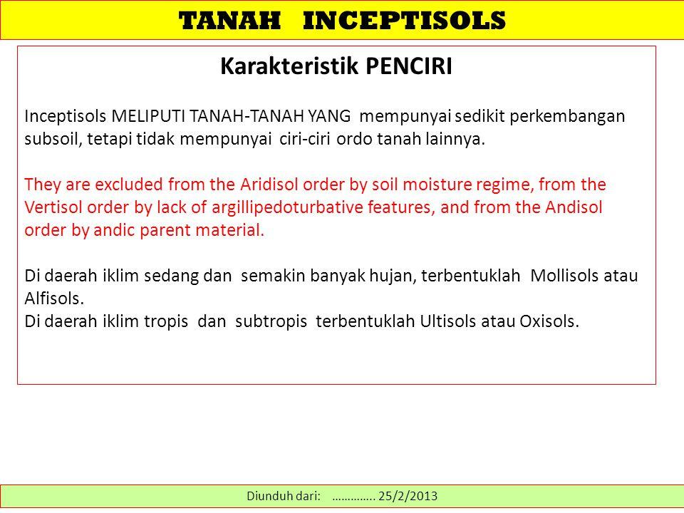 TANAH INCEPTISOLS Karakteristik PENCIRI Inceptisols MELIPUTI TANAH-TANAH YANG mempunyai sedikit perkembangan subsoil, tetapi tidak mempunyai ciri-ciri