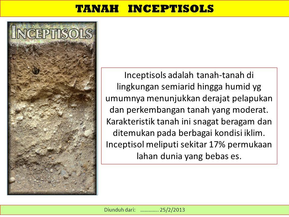 TANAH INCEPTISOLS Inceptisols adalah tanah-tanah di lingkungan semiarid hingga humid yg umumnya menunjukkan derajat pelapukan dan perkembangan tanah y