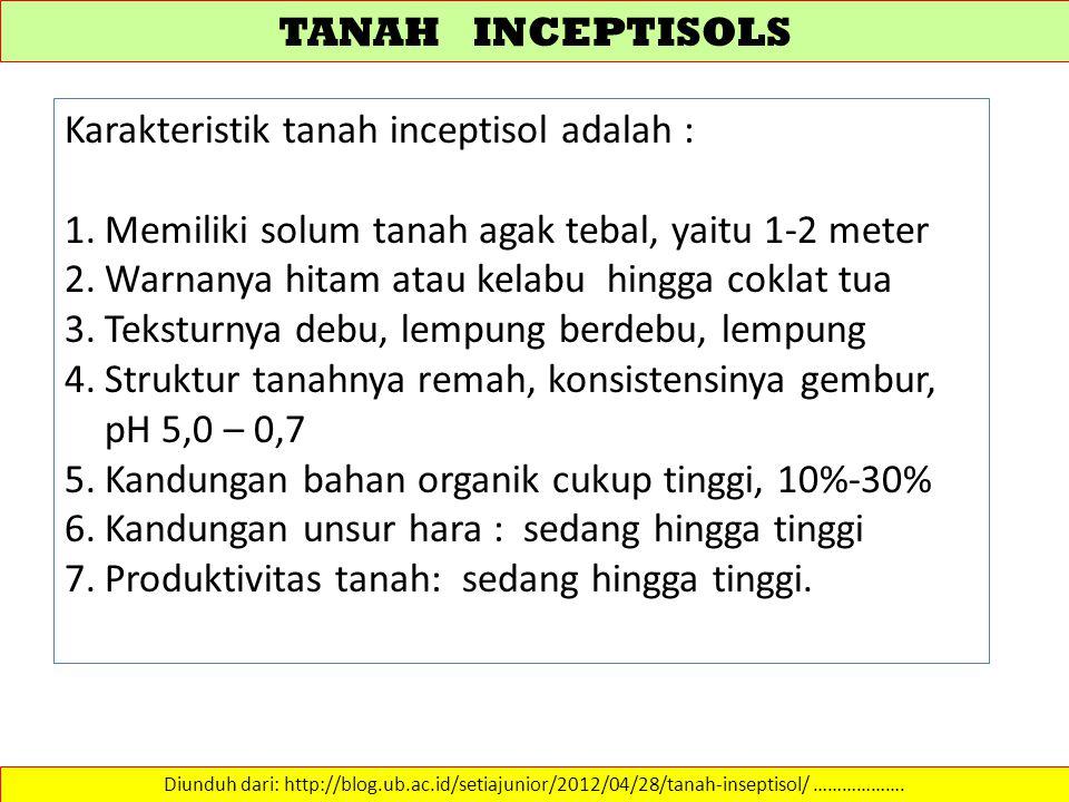 TANAH INCEPTISOLS Diunduh dari: http://blog.ub.ac.id/setiajunior/2012/04/28/tanah-inseptisol/ ………………. Karakteristik tanah inceptisol adalah : 1.Memili