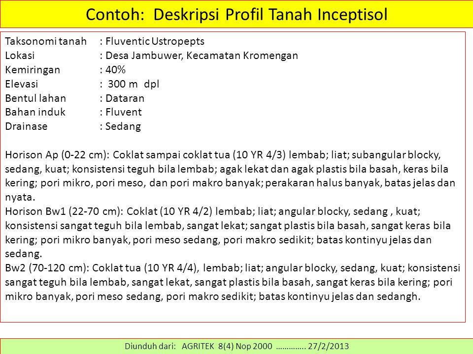 Contoh: Deskripsi Profil Tanah Inceptisol Taksonomi tanah: Fluventic Ustropepts Lokasi: Desa Jambuwer, Kecamatan Kromengan Kemiringan: 40% Elevasi: 30