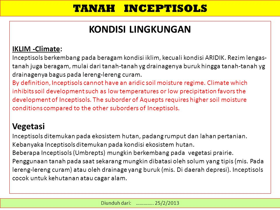 TANAH INCEPTISOLS Inceptisols are young soils that are more developed than entisols.
