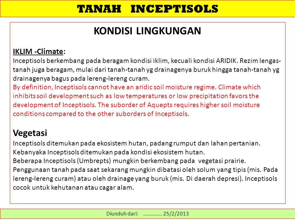 TANAH INCEPTISOLS Inceptisols adalah tanah-tanah di lingkungan semiarid hingga humid yg umumnya menunjukkan derajat pelapukan dan perkembangan tanah yang moderat.