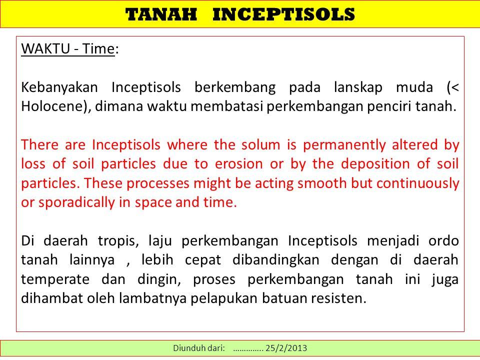 TANAH INCEPTISOLS WAKTU - Time: Kebanyakan Inceptisols berkembang pada lanskap muda (< Holocene), dimana waktu membatasi perkembangan penciri tanah. T