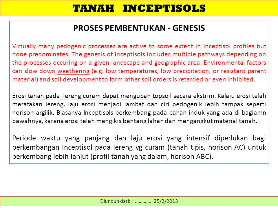 TANAH INCEPTISOLS PROSES PEMBENTUKAN - GENESIS Virtually many pedogenic processes are active to some extent in Inceptisol profiles but none predominates.