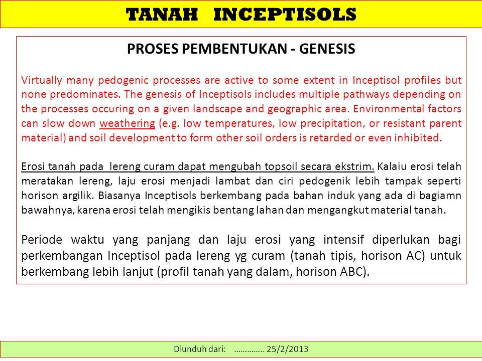 TANAH INCEPTISOLS PROSES GENESIS Inceptisols juga berkembang pada material colluvium di bagian bawah dari lereng-lereng yang curam.