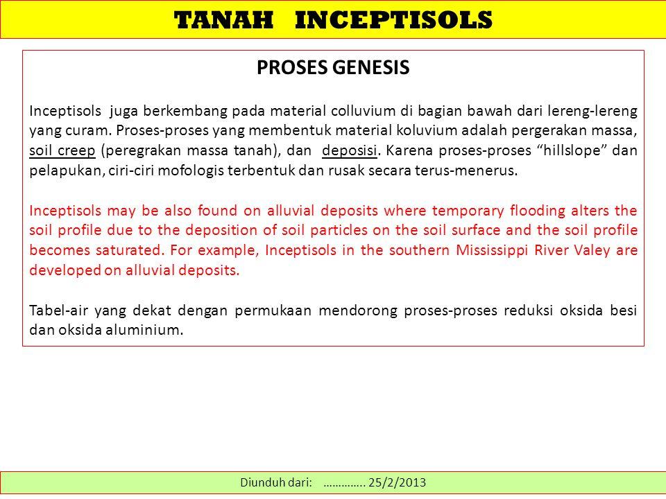 TANAH INCEPTISOLS PROSES GENESIS Pada zone depresi atau dasar-dasar lembah ditemukan inceptisols yg drainagenya buruk dimana proses gleizasi menghasilkan ciri redoximorphic.
