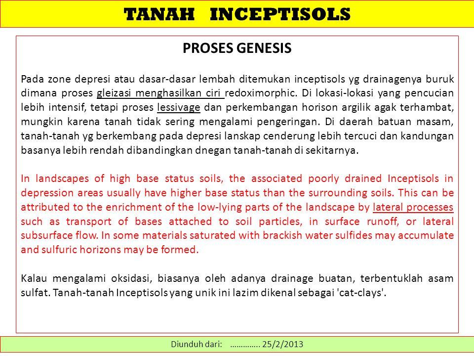 TANAH INCEPTISOLS PROSES GENESIS Pada zone depresi atau dasar-dasar lembah ditemukan inceptisols yg drainagenya buruk dimana proses gleizasi menghasil