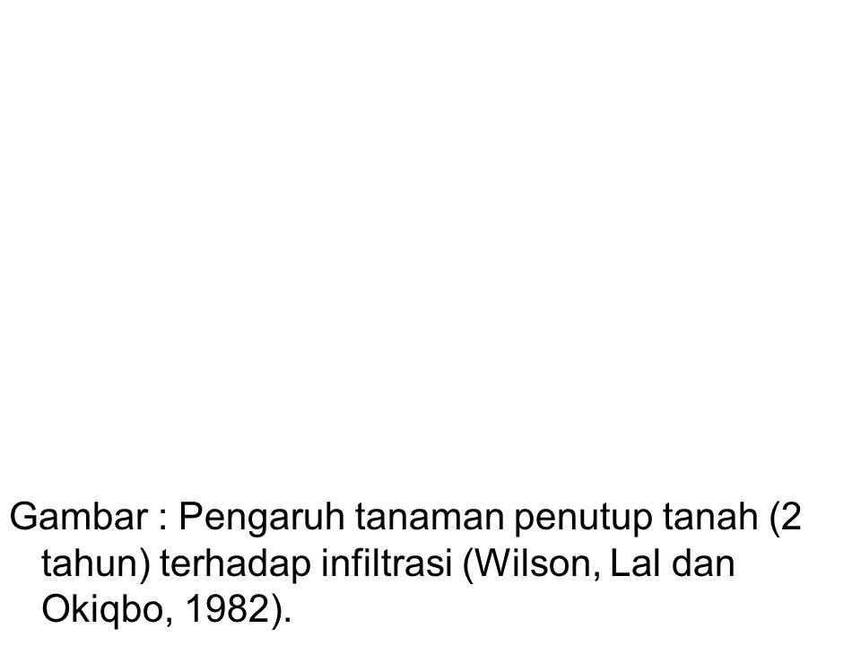 Gambar : Pengaruh tanaman penutup tanah (2 tahun) terhadap infiltrasi (Wilson, Lal dan Okiqbo, 1982).