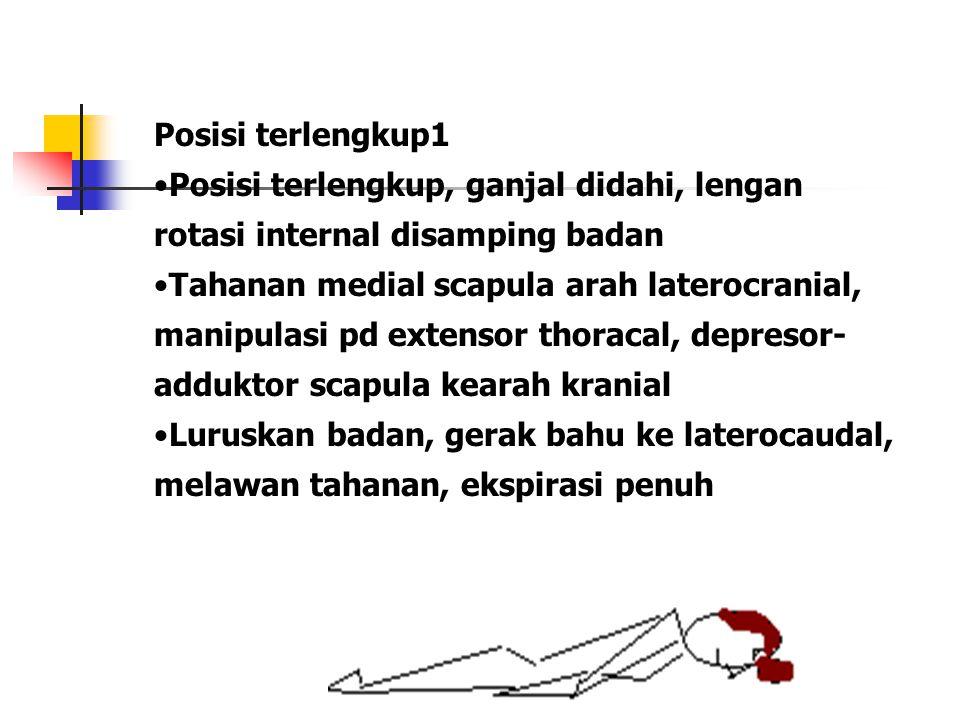 Posisi terlengkup1 Posisi terlengkup, ganjal didahi, lengan rotasi internal disamping badan Tahanan medial scapula arah laterocranial, manipulasi pd e
