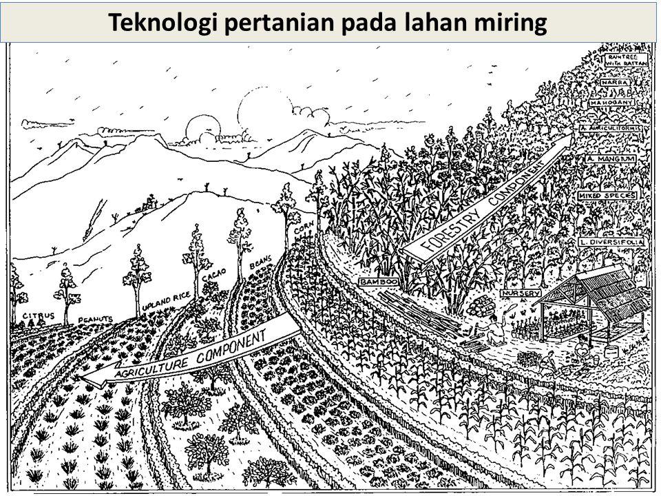 Pemanfaatan Lahan untuk Hutan Beberapa atribut penting bagi LUT untuk hutan adalah produk, slope, tenagakerja, kapital, taraf teknologi dan pengelolaan.
