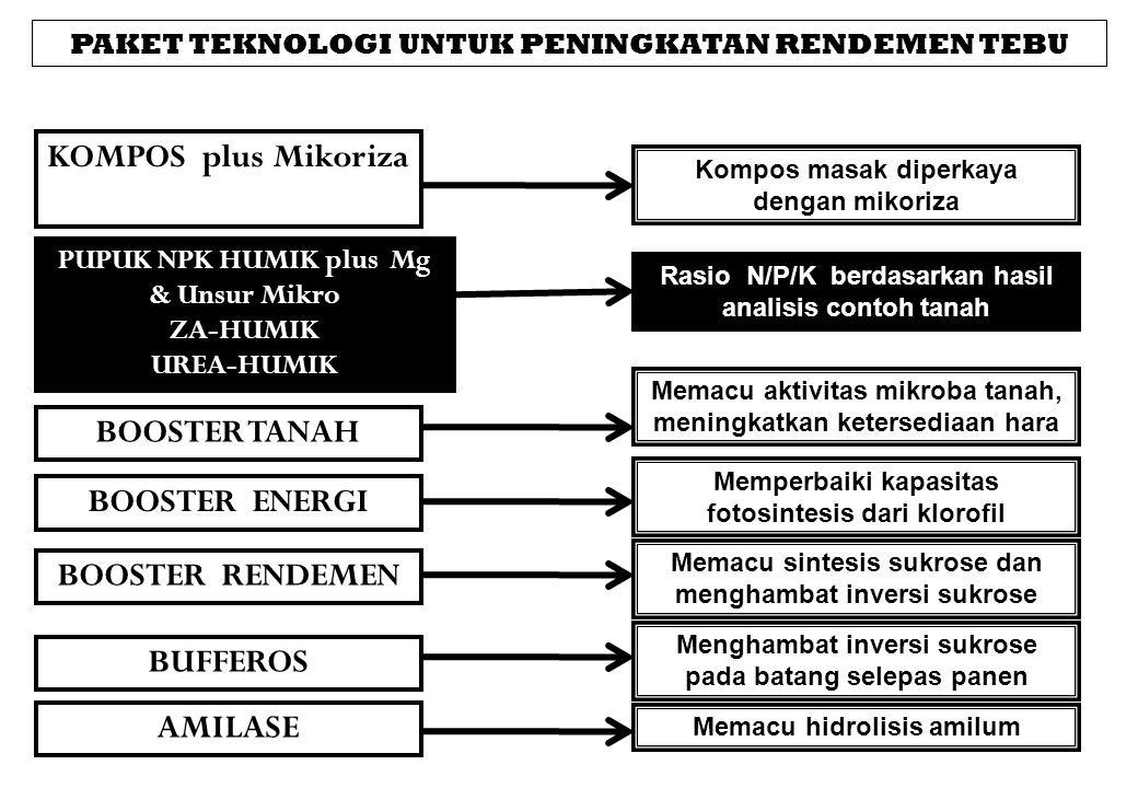 PAKET TEKNOLOGI UNTUK PENINGKATAN RENDEMEN TEBU KOMPOS plus Mikoriza Rasio N/P/K berdasarkan hasil analisis contoh tanah PUPUK NPK HUMIK plus Mg & Uns
