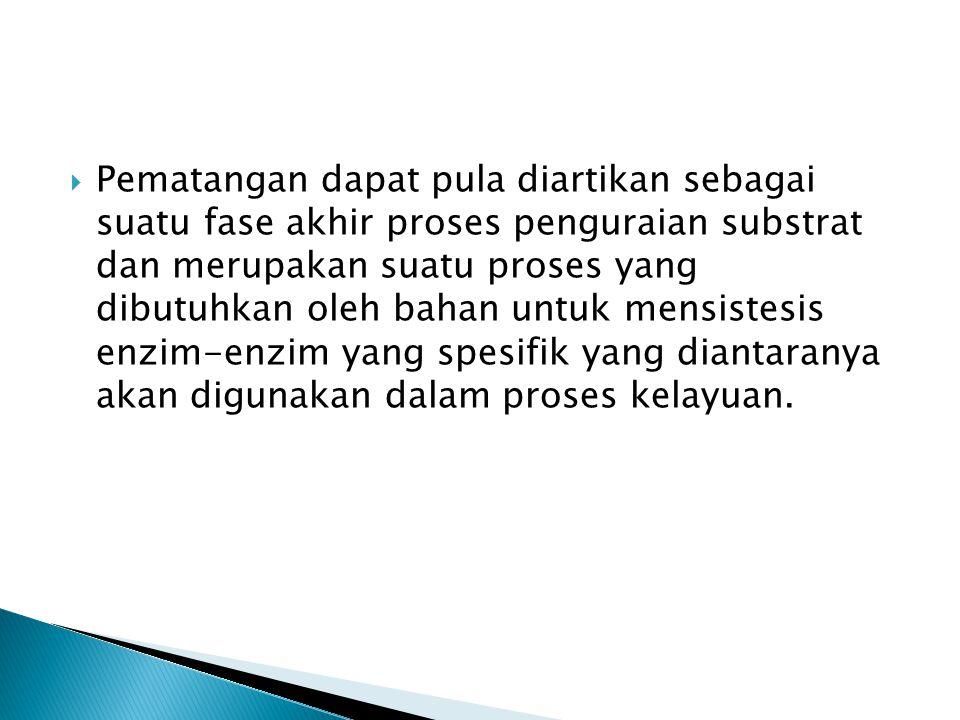 Pematangan dapat pula diartikan sebagai suatu fase akhir proses penguraian substrat dan merupakan suatu proses yang dibutuhkan oleh bahan untuk mensistesis enzim-enzim yang spesifik yang diantaranya akan digunakan dalam proses kelayuan.