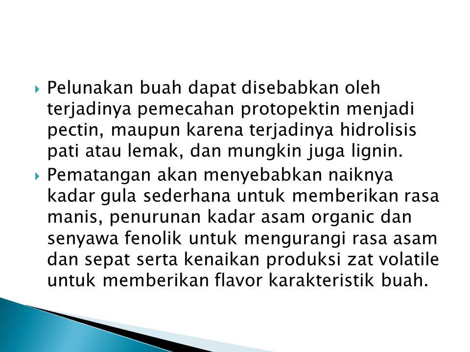  Pelunakan buah dapat disebabkan oleh terjadinya pemecahan protopektin menjadi pectin, maupun karena terjadinya hidrolisis pati atau lemak, dan mungkin juga lignin.