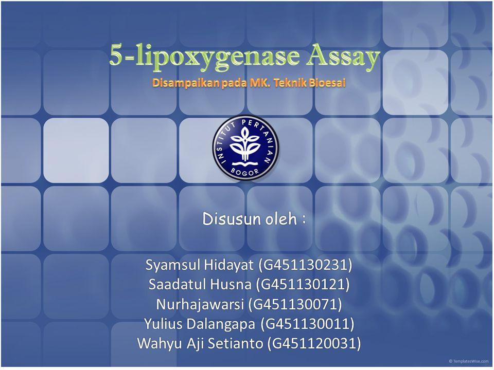 Arachidonic Acid 5-Hydroperoxyeicosatetraenoic Acid (5-HPETE) 5-Hydroperoxyeicosatetraenoic Acid (5-HPETE) Leukotriene B 4 ( LTB 4 ) Inflammation 5-Lipoxygenase Leukotriene A ( LTA 4 ) LTA 4 Hydrolase 5-Lipoxygenase
