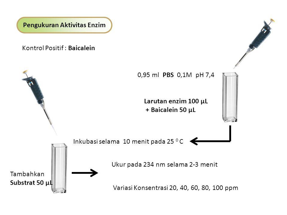 Pengukuran Aktivitas Enzim Kontrol Negatif 0,95 ml PBS 0,1M pH 7,4 Larutan enzim 100 µL Inkubasi selama 10 menit pada 25 0 C Tambahkan Substrat 50 µL Ukur pada 234 nm selama 2-3 menit