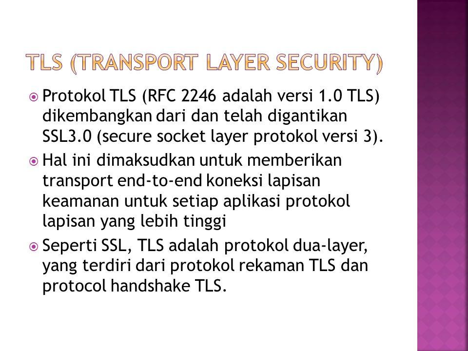  Protokol TLS (RFC 2246 adalah versi 1.0 TLS) dikembangkan dari dan telah digantikan SSL3.0 (secure socket layer protokol versi 3).
