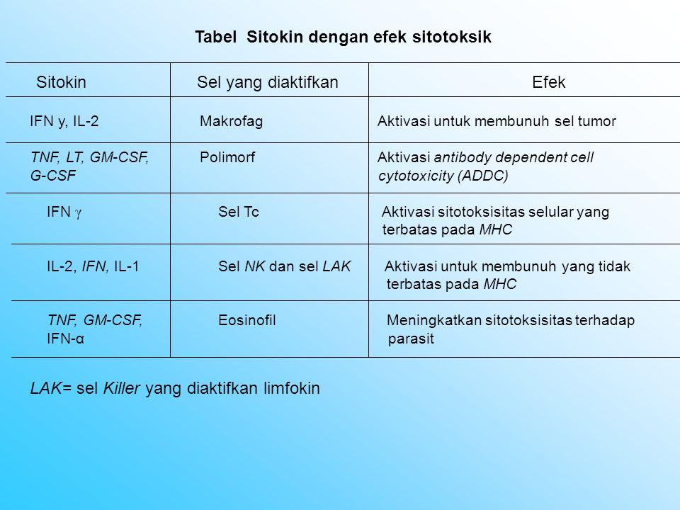 IFN γ Sel Tc Aktivasi sitotoksisitas selular yang terbatas pada MHC IL-2, IFN, IL-1Sel NK dan sel LAK Aktivasi untuk membunuh yang tidak terbatas pada MHC TNF, GM-CSF,Eosinofil Meningkatkan sitotoksisitas terhadap IFN-α parasit Tabel Sitokin dengan efek sitotoksik Sitokin Sel yang diaktifkan Efek IFN y, IL-2Makrofag Aktivasi untuk membunuh sel tumor TNF, LT, GM-CSF,Polimorf Aktivasi antibody dependent cell G-CSF cytotoxicity (ADDC) LAK= sel Killer yang diaktifkan limfokin