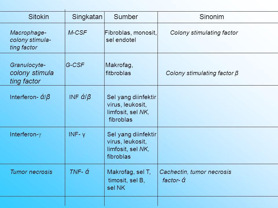 Sitokin Singkatan Sumber Sinonim Macrophage- M-CSF Fibroblas, monosit, colony stimula- sel endotel ting factor Colony stimulating factor Granulocyte-
