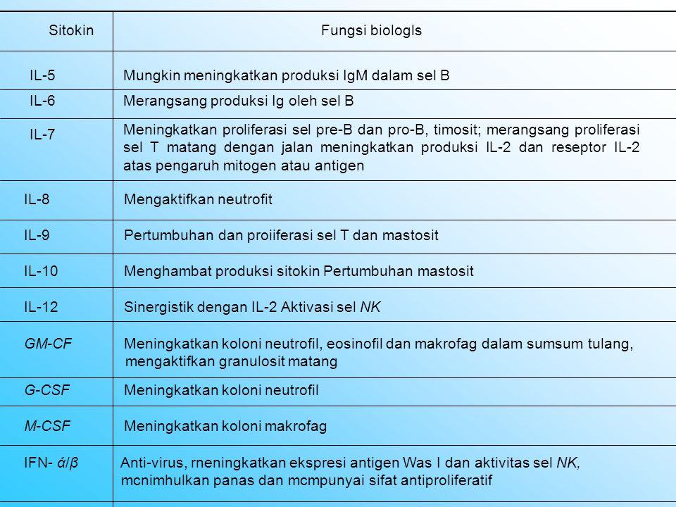A.Pembagian antigen tumor secara serologis 1.Antigen kelas I, yang hanya ditemukan pada tumor itu saja dan tidak pada sel normal atau keganasan lain.