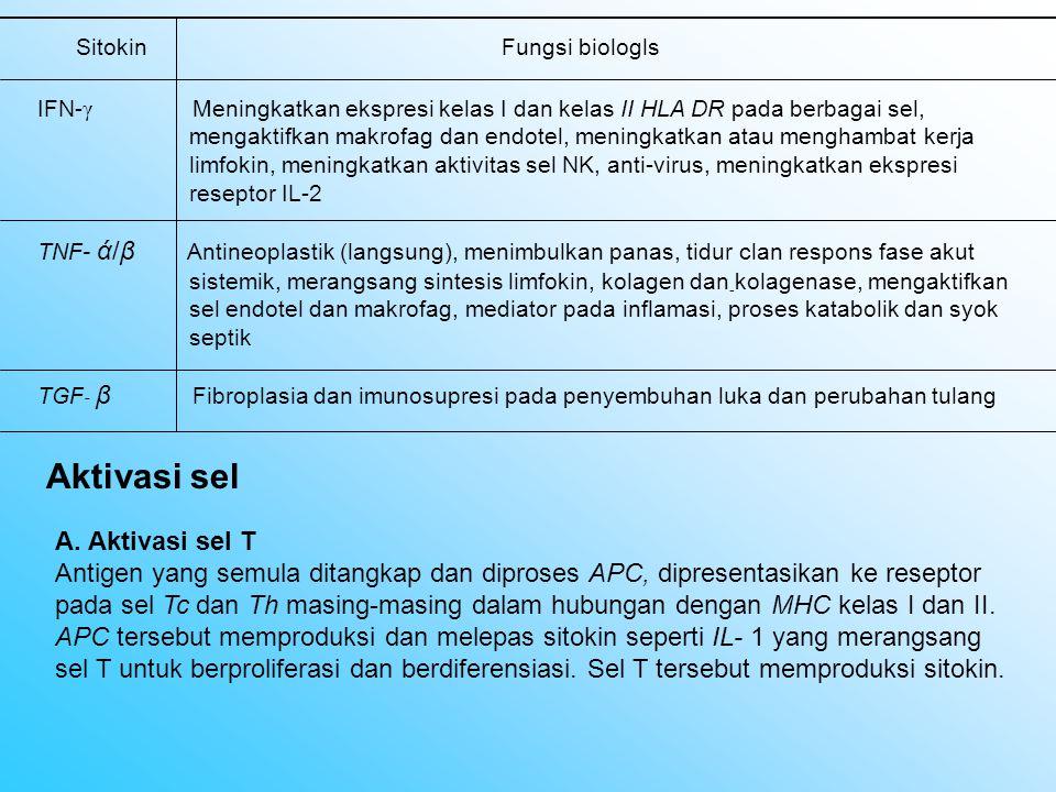 II.Respons imun terhadap tumor A. Mekanisme humoral 1.