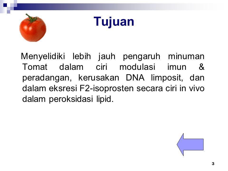 3 Tujuan Menyelidiki lebih jauh pengaruh minuman Tomat dalam ciri modulasi imun & peradangan, kerusakan DNA limposit, dan dalam eksresi F2-isoprosten secara ciri in vivo dalam peroksidasi lipid.