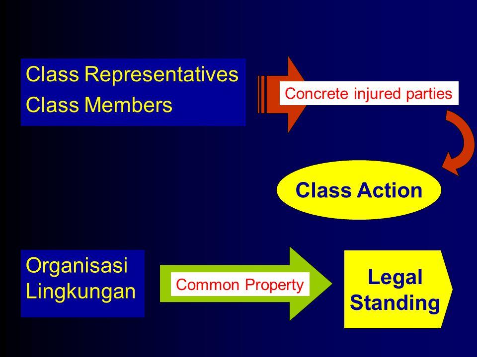 Class Representatives Class Members Concrete injured parties Class Action Organisasi Lingkungan Common Property Legal Standing