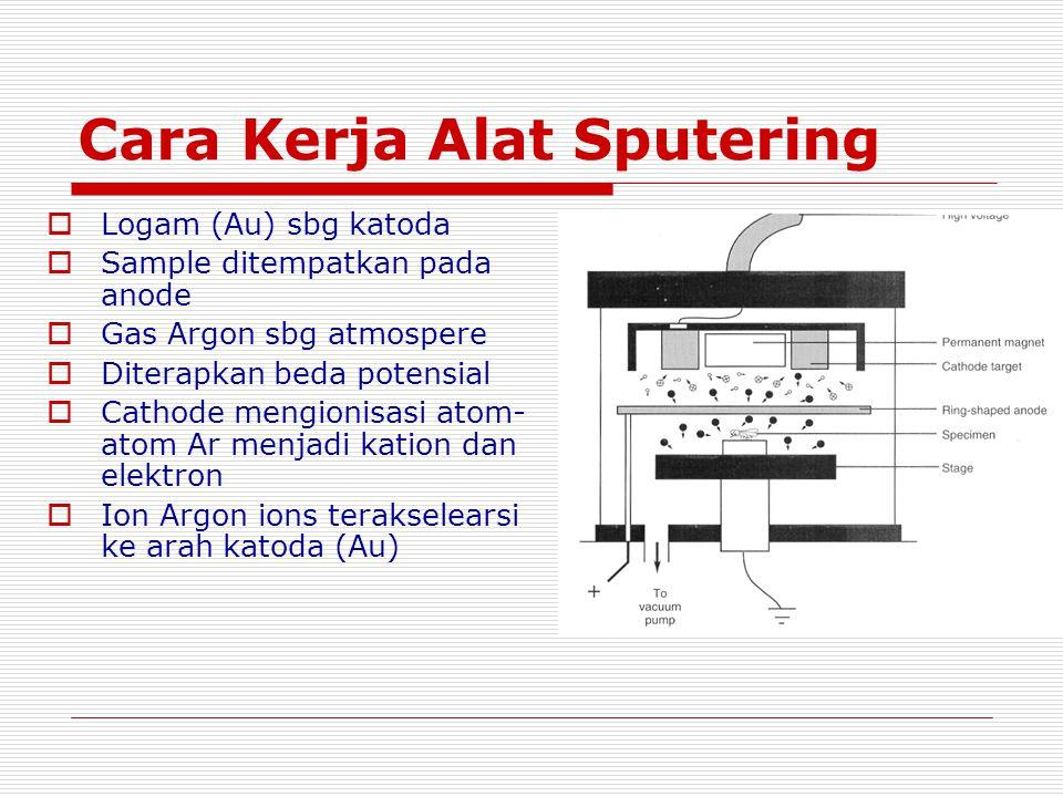 Cara Kerja Alat Sputering  Logam (Au) sbg katoda  Sample ditempatkan pada anode  Gas Argon sbg atmospere  Diterapkan beda potensial  Cathode meng