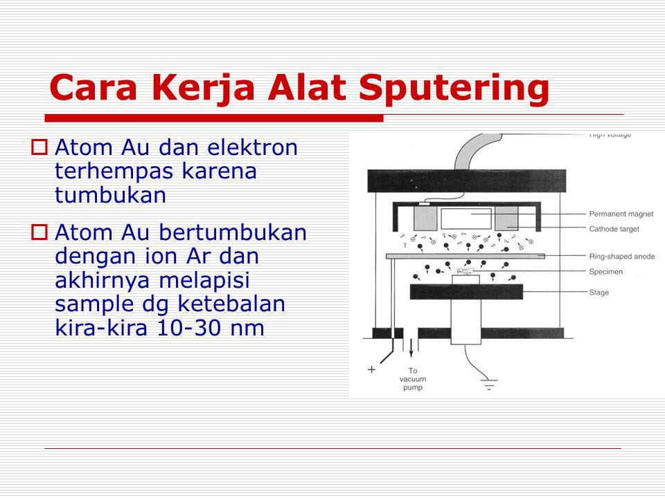 Cara Kerja Alat Sputering  Atom Au dan elektron terhempas karena tumbukan  Atom Au bertumbukan dengan ion Ar dan akhirnya melapisi sample dg ketebalan kira-kira 10-30 nm
