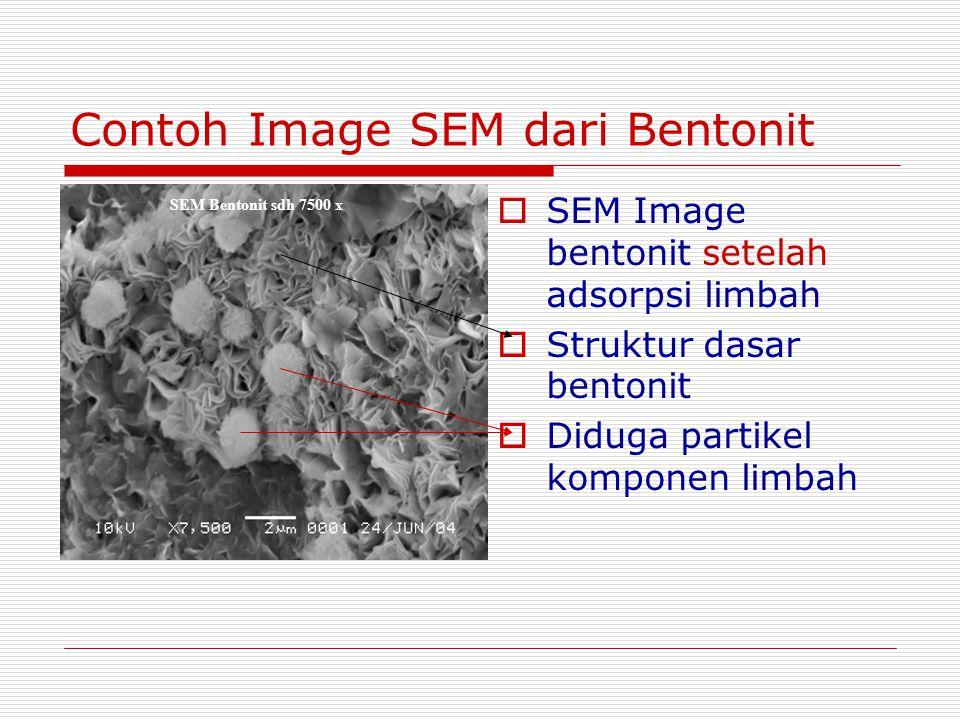 Contoh Image SEM dari Bentonit  SEM Image bentonit setelah adsorpsi limbah  Struktur dasar bentonit  Diduga partikel komponen limbah SEM Bentonit s