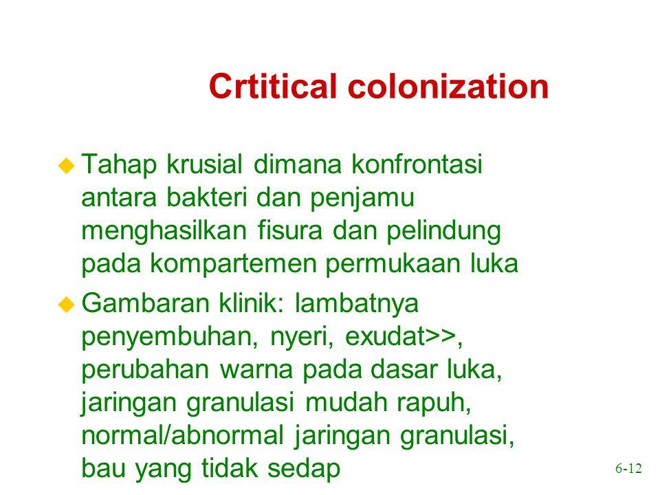 6-12 Crtitical colonization u Tahap krusial dimana konfrontasi antara bakteri dan penjamu menghasilkan fisura dan pelindung pada kompartemen permukaan