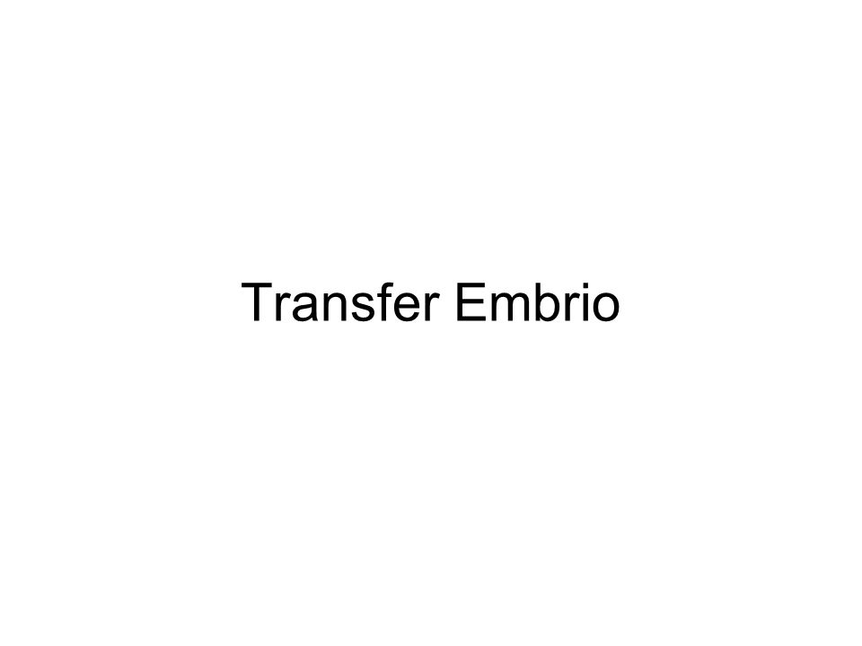 Transfer Embrio