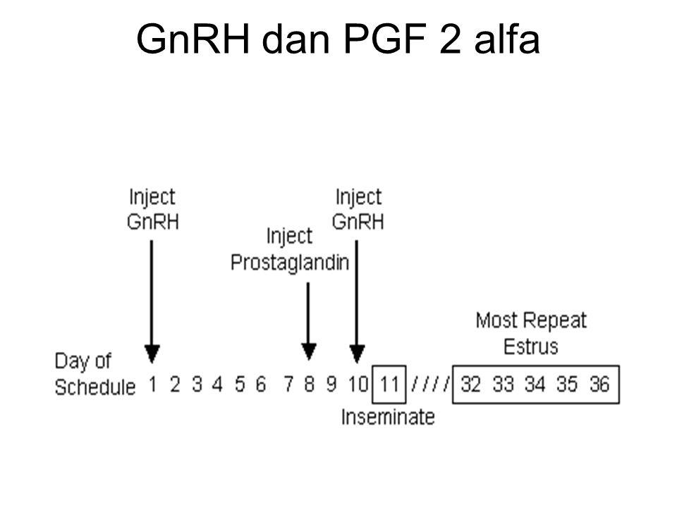 GnRH dan PGF 2 alfa