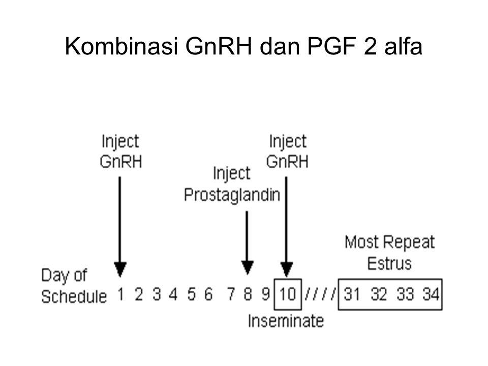 Trinil S, Unibraw 2005 Kombinasi GnRH dan PGF 2 alfa