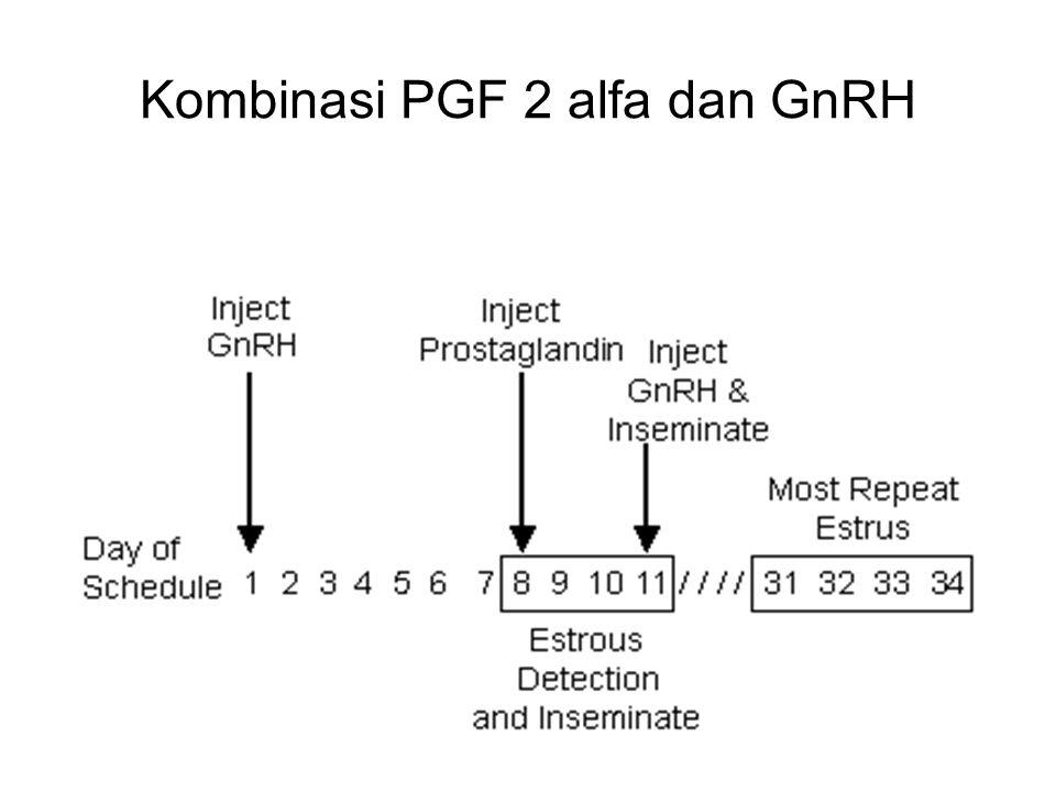 Trinil S, Unibraw 2005 Kombinasi PGF 2 alfa dan GnRH
