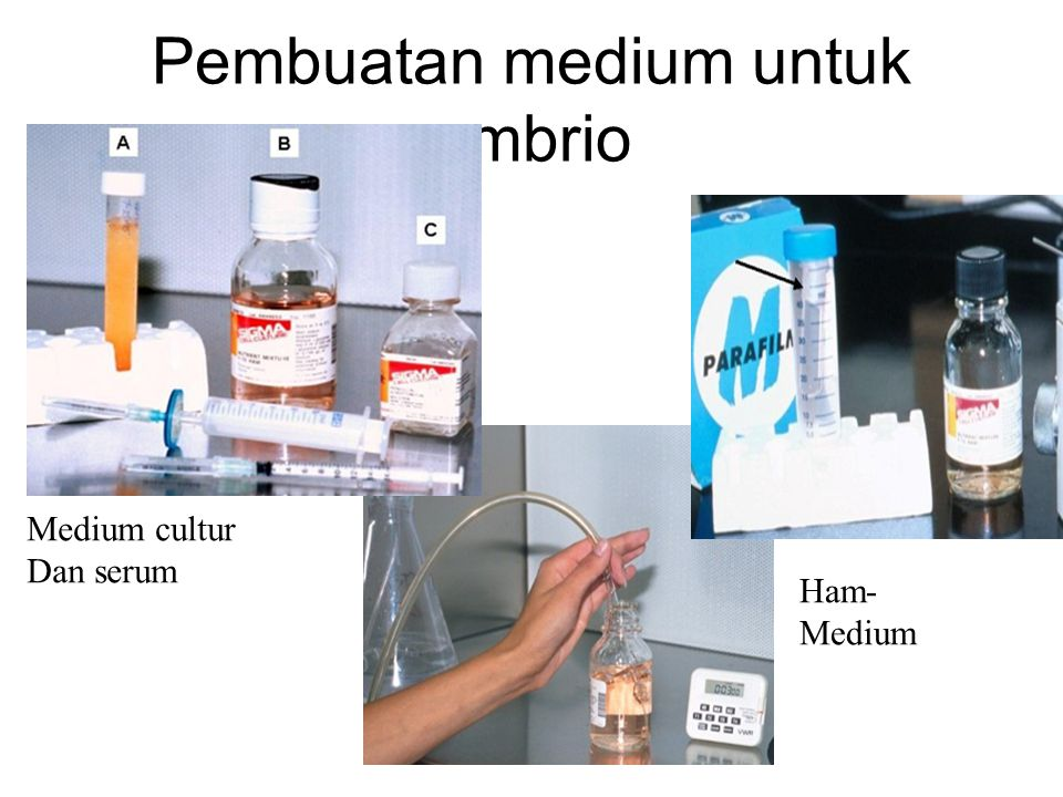 Pembuatan medium untuk embrio Medium cultur Dan serum Ham- Medium Medium